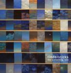 The something rain Tindersticks, grpe voc. et instr. Stuart A. Staples, chant, enr., mix.