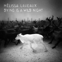 Dying is a wild night Mélissa Laveaux, aut., comp., chant, guit.